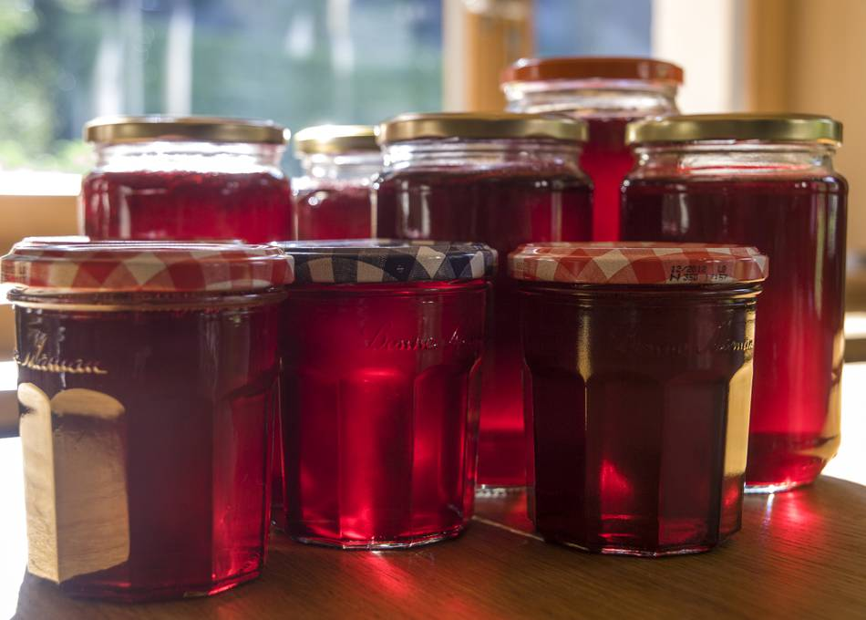 Home-made redcurrant jelly made from locally picked berries